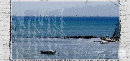 cropped-DSC_0037b.jpg