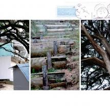 noirmoutier-nature-30x40